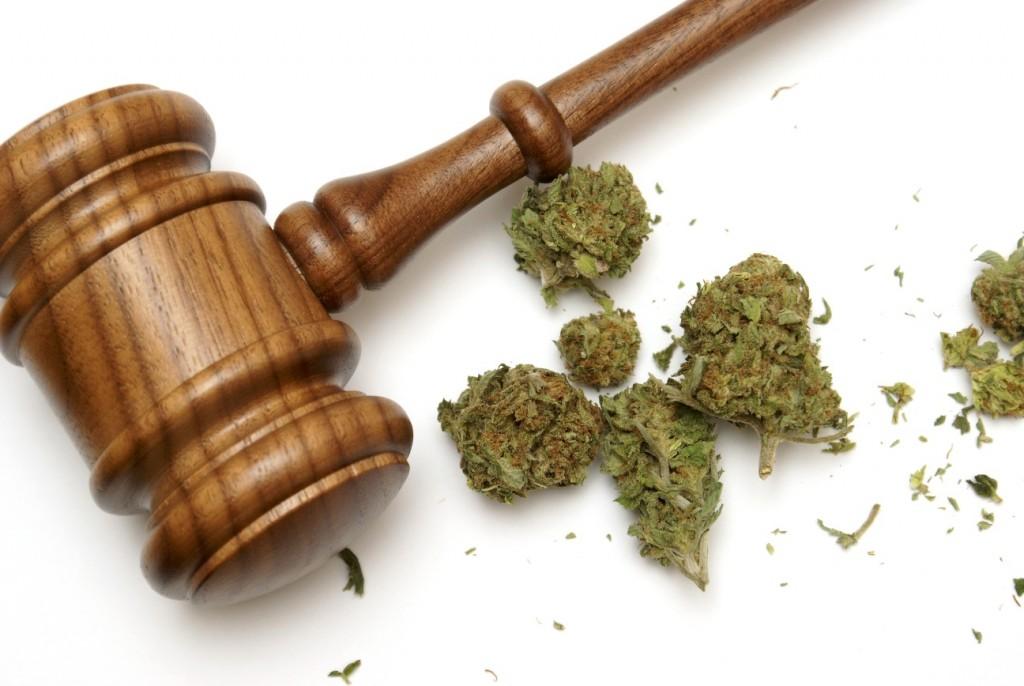 Australijski premier wypowiada się na temat legalizacji, THCLand.pl