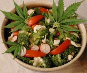 salad-recipes-marijuana
