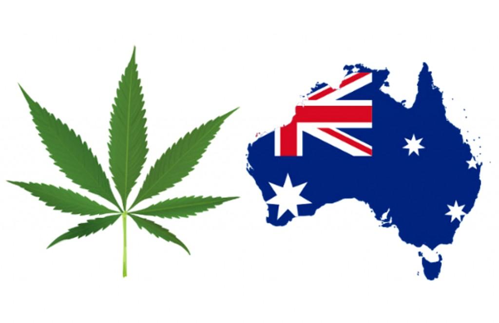 Australia zobowiązuje się do legalizacji uprawy medycznej marihuany, THCLand.pl