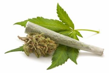 Różnica pomiędzy medyczną marihuaną a opium, THCLand.pl