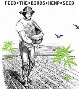 karmienie-ptakow-konopia-marihuana-dla-zwierzat