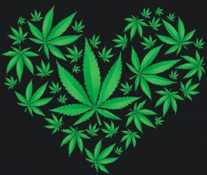 liscie-marihuany-serce-zielone