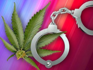 Badanie pokazuje, że legalna marihuana nie ma związku z podnoszeniem wskaźnika przestępczości, THCLand.pl