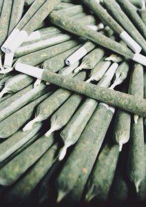 marihuana-zwijana-marihuana-do-palenia