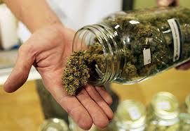 medyczna-marihuana-medyczna-marihuana-w-sloiku-przetrzymywana-w-szkle