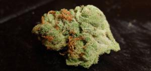 Naukowcy wyjaśniają dlaczego wiele osób z dolegliwością typu PTSD sięga po marihuanę, THCLand.pl