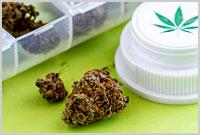 Waporyzowanie cannabis jest skuteczne w leczeniu neuropatii, THCLand.pl