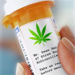Medyczna marihuana jest legalna w Wirginii od 1979 roku, THCLand.pl