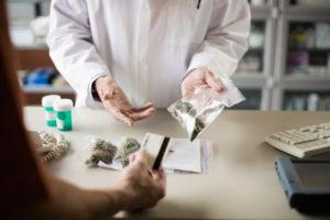 Budweiser twierdzi, że cannabis to potencjalne piwo rzemieślnicze, THCLand.pl