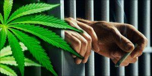 Peru legalizuje medyczną marihuanę, THCLand.pl