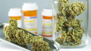 Medyczna marihuana jako leczenie alkoholizmu, THCLand.pl