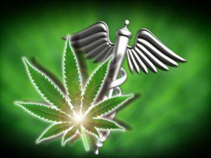 Cannabis dla pacjentów ze specjalnymi potrzebami, THCLand.pl