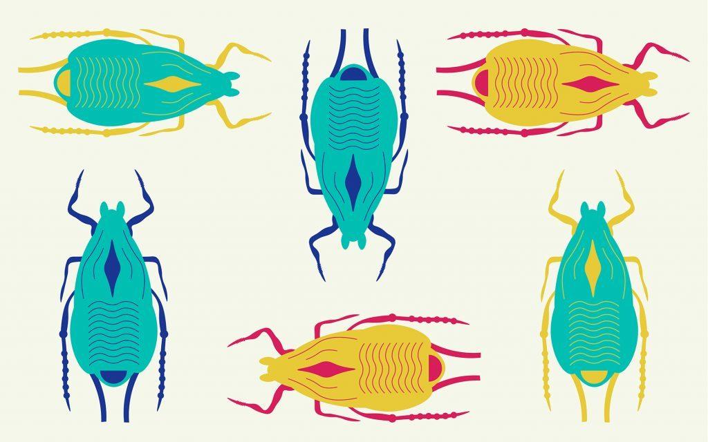 Zapobieganie pojawienia się robaków, THCLand.pl