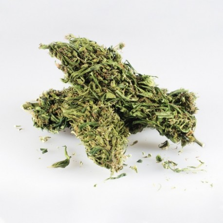 Palenie vs wapowanie marihuany, THCLand.pl