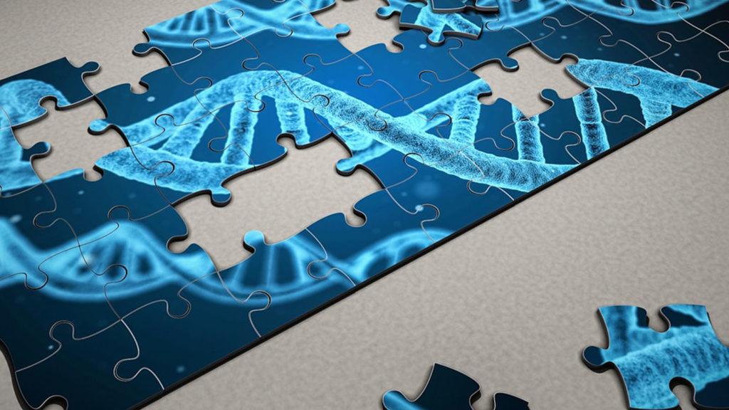 Wpływ marihuany na DNA, THCLand.pl