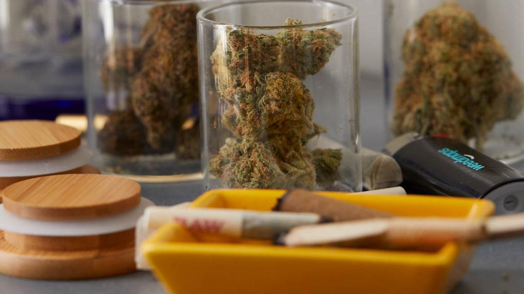 Legalizacja marihuany w Meksyku, THCLand.pl