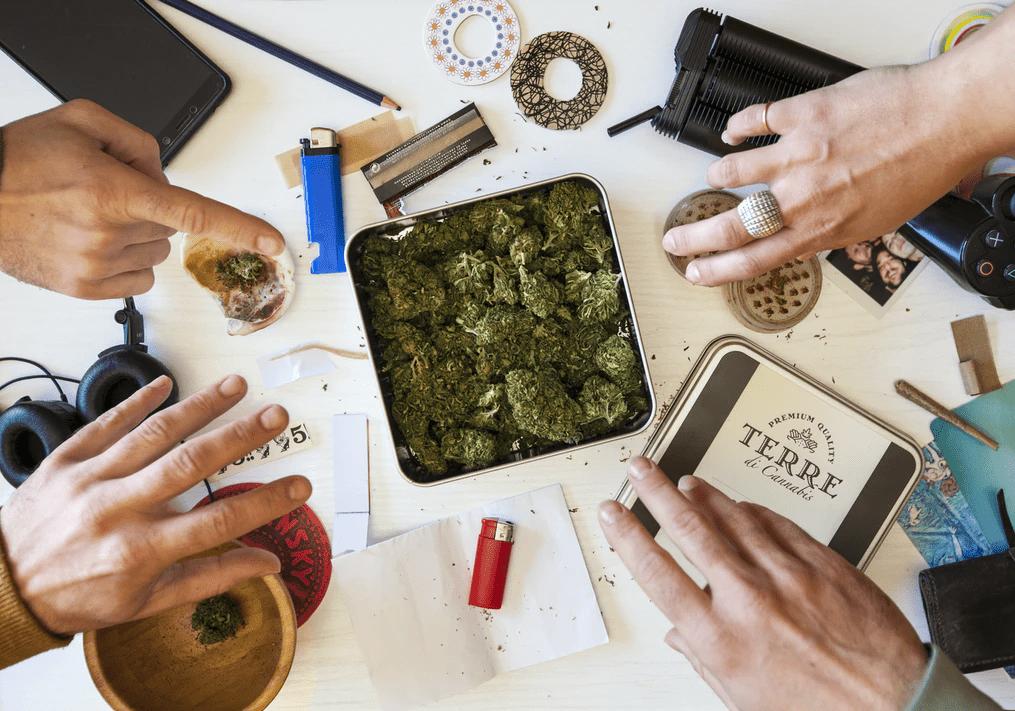 Tajlandia Rozszerza Produkcję Medycznej Marihuany, THCLand.pl