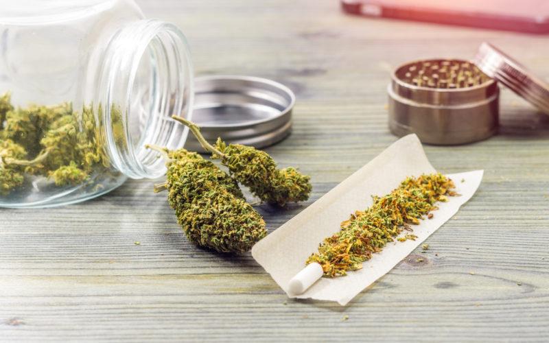 Wzrost Liczby Aktywnych Pacjentów Medycznej Marihuany, THCLand.pl
